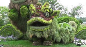 Une mosaïculture de dragon chinois